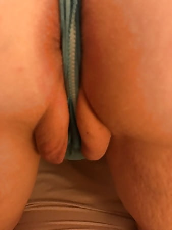 from back the toe Camel