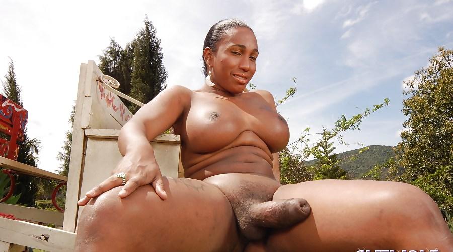Толстые черные бабы с хуями женские