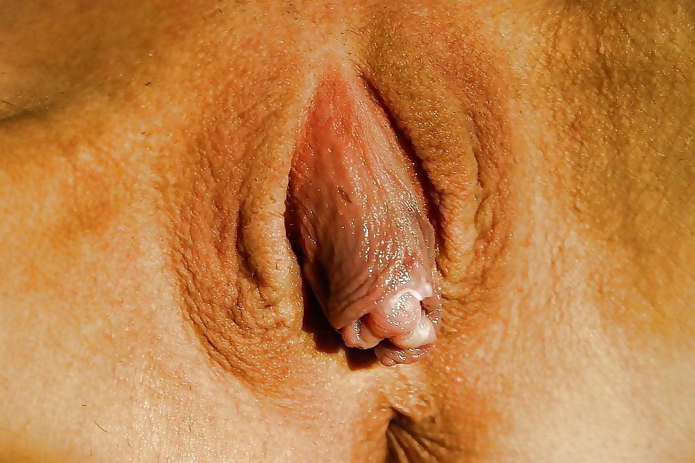 foto-krupnim-genitaliy-moskvi-zrelie