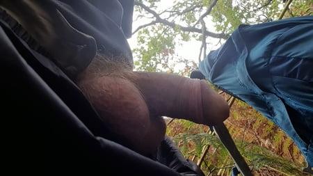 Outdoor Penis