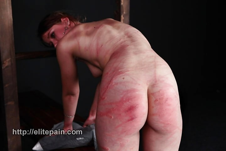 Bdsm pet puppy sub slave torture blood gore