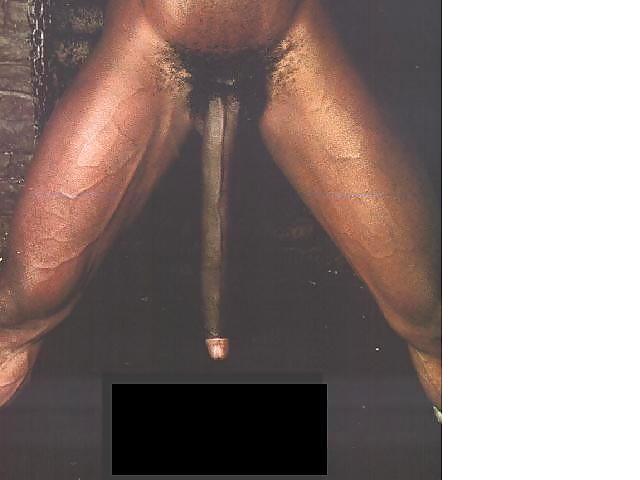 long-dong-silver-porno