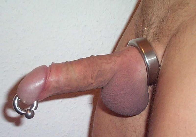 Pics of penis piercing