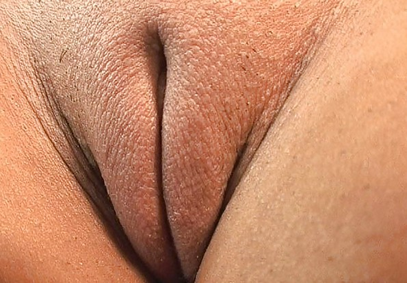 wallpapers zoomed pussy