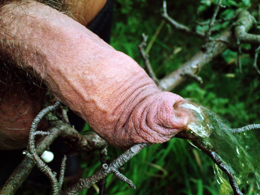 Bodybuilderin Miniarsch Wald Rimmingsex