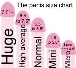 Ammature anal