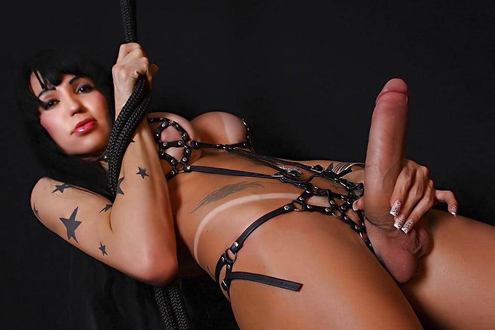 Free Shemale BDSM Pics