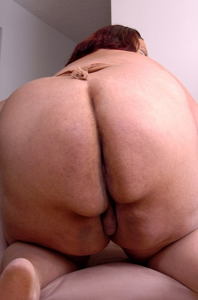 Bbw and black shemale to action free porn