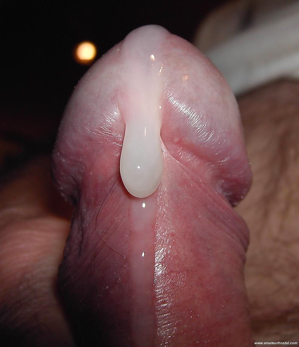фото мой член в сперме сторонам