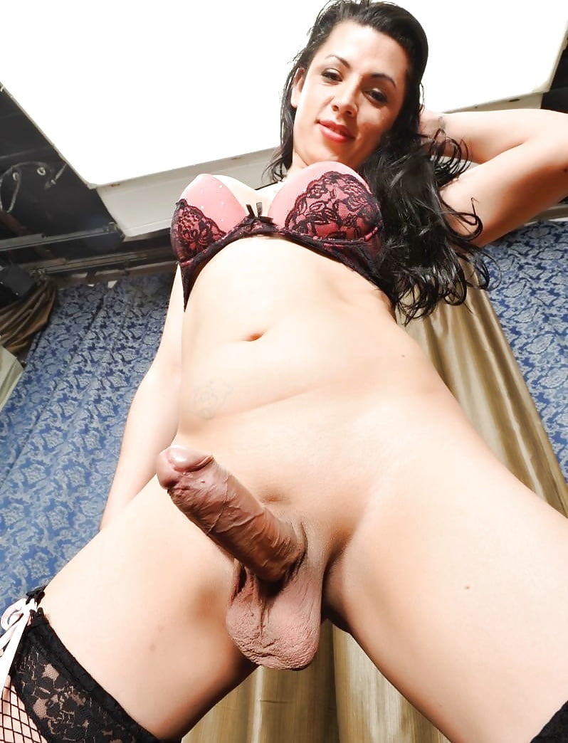 Hairy gorgeous shemale, style of sex porn xxx