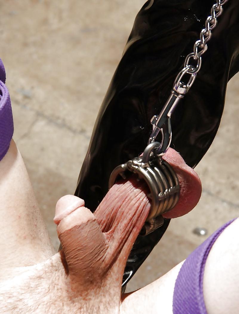 Cbt Torture Porn Pics