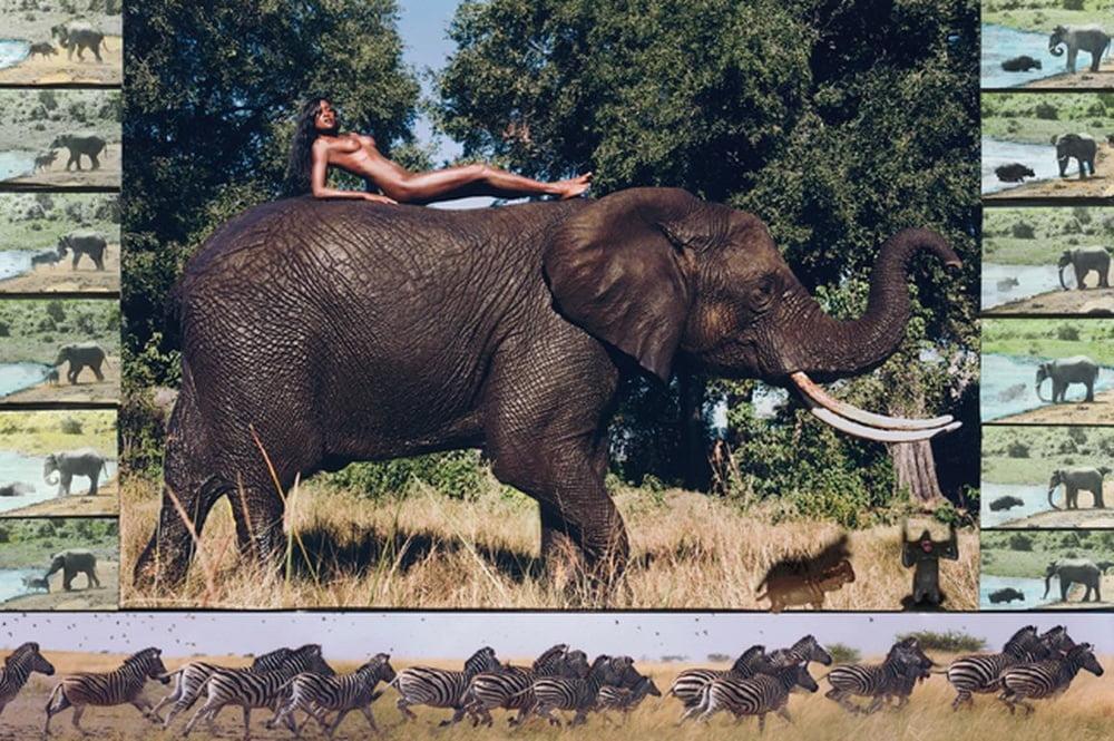 2009 Africa - 56 Pics
