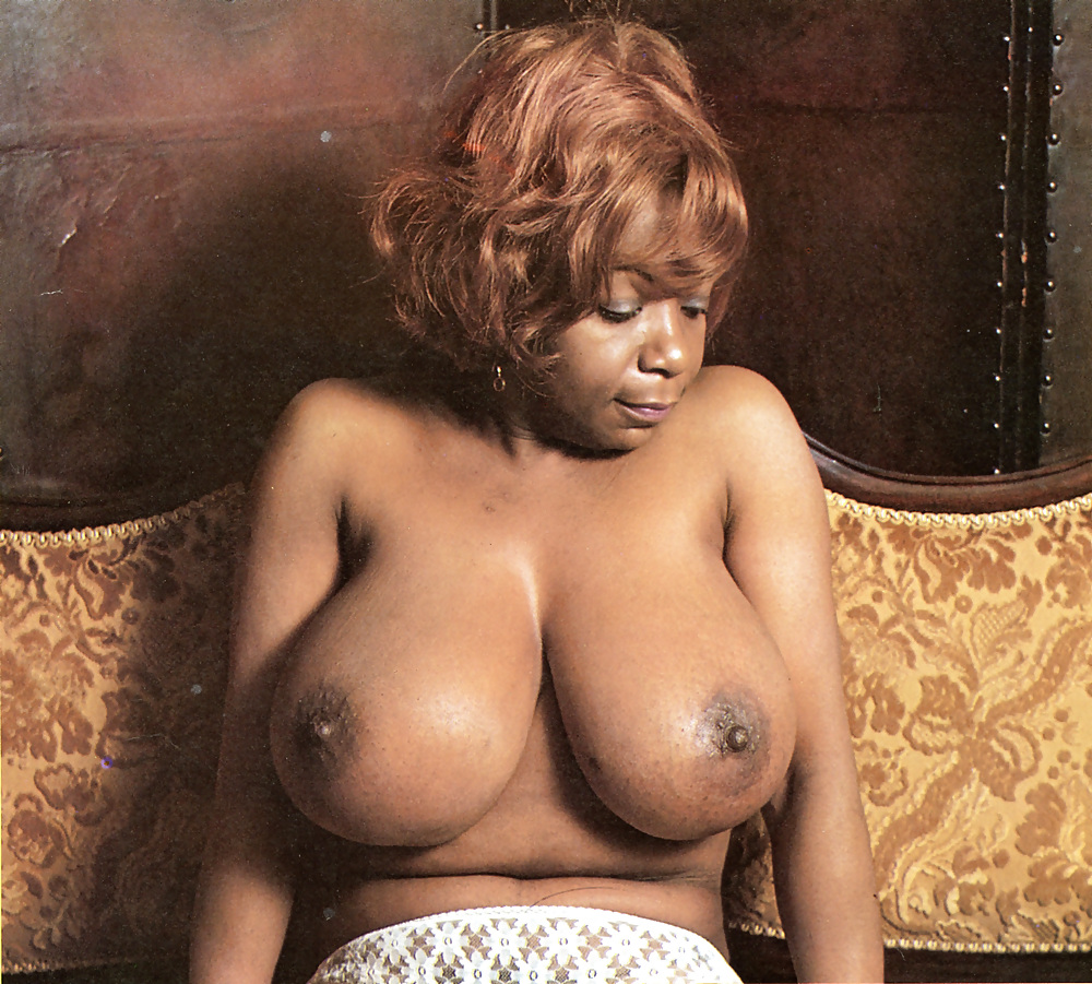 See And Save As Donatella Damiani Vintage Italian Big Boobs Actress Porn Pict