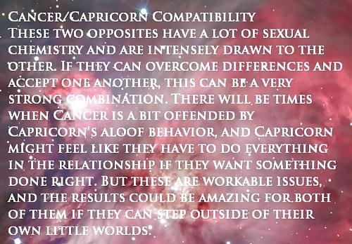 Capricorn Sex Position