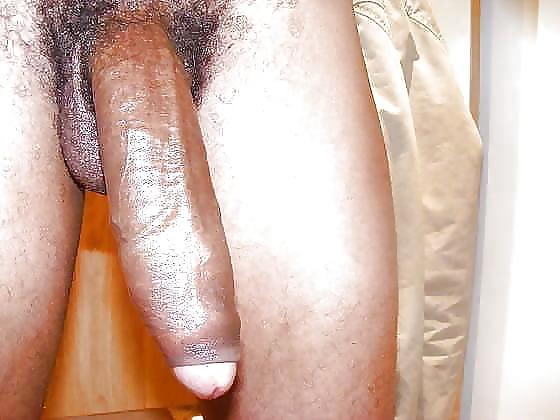 Porn man sucking boobs-1649