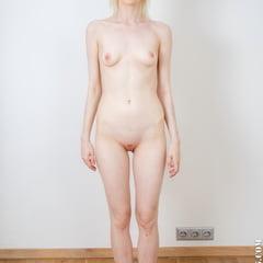 Ingrid Swedish Skinny Teengirl Poses Naked In Nude Casting