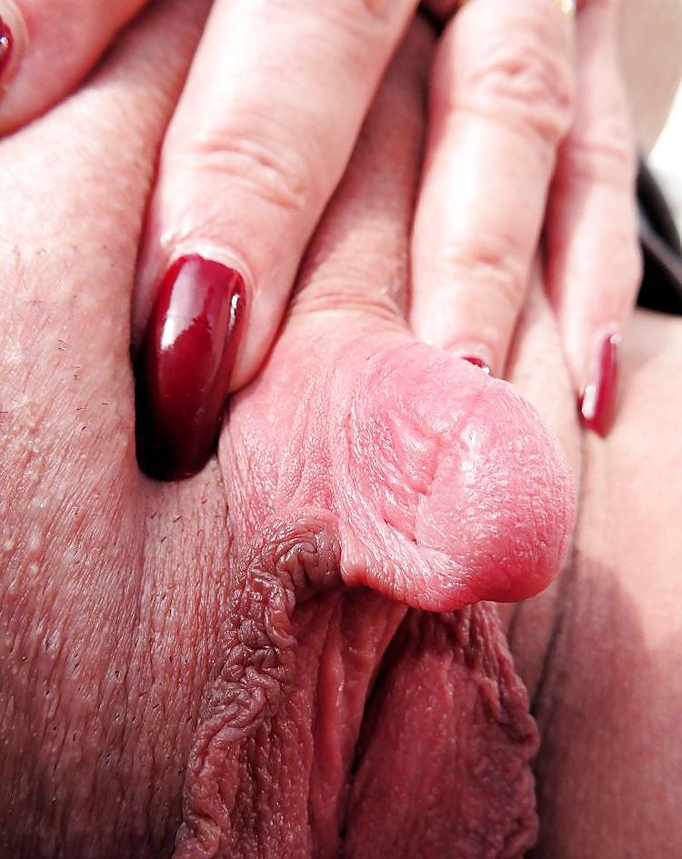 soft-hard-clitoris-gallery-sexy-pretty-women-porn